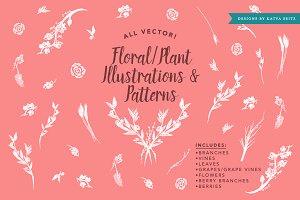 Vines/Plant Illustrations & Patterns