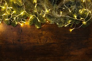 Fir branches with garland