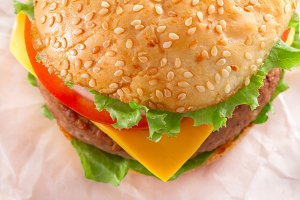Cheese Burger close-up