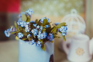 Forget-me-not in rustic cup