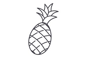 pineapple vector line icon, sign, illustration on background, editable strokes
