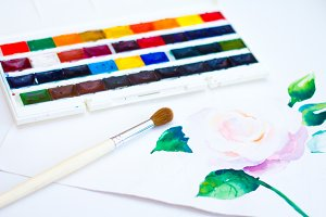 The palette of watercolor paints and on a white background, closeup.