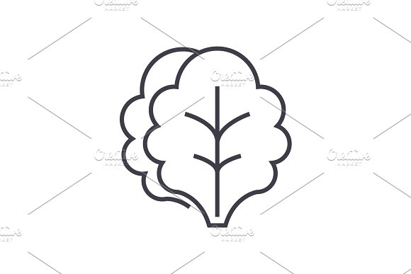 salad vector line icon, sign, illustration on background, editable strokes