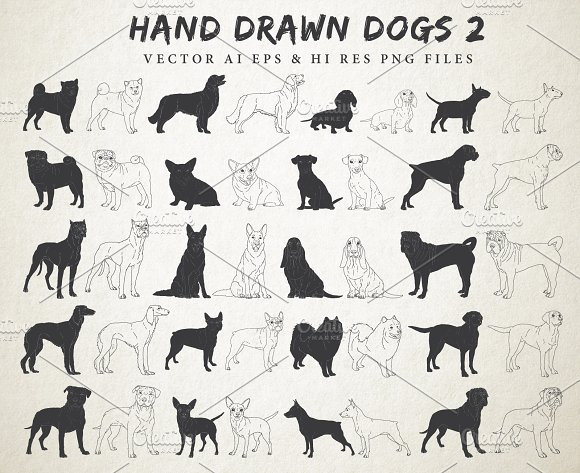 Hand Drawn Dog Breeds Vecto-Graphicriver中文最全的素材分享平台