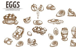 Bundle of 20 eggs vector set 1