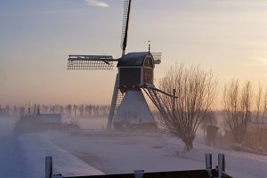 Wingerdse mill in wintermood