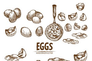 Bundle of 20 eggs vector set 3