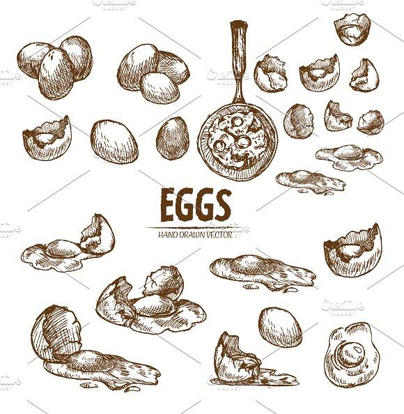 Bundle Of 20 Eggs Vector Set 3