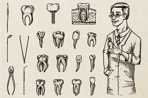 Teeth, Dental Set. Dentist or Doctor