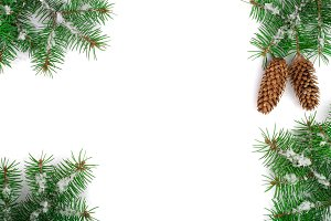 Frame of Fir tree branch with snow and cone isolated on white background with copy space for your text. Top view