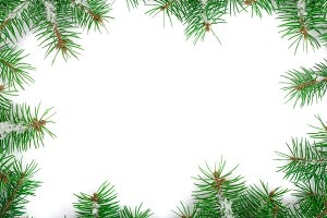 Frame of Fir tree branch with snow isolated on white background with copy space for your text. Top view