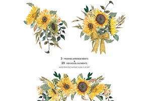 Hand Painted Sunflower Clip Art