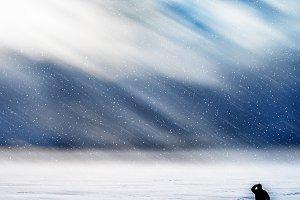 Traveler meeting dramatic snow storm backdrop