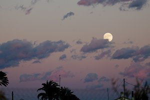 Full moon in the cloudy sky of Elche
