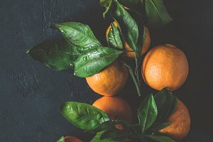 Tangerines with green leaves on dark
