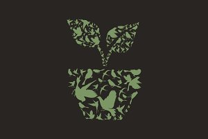 Plant a bird