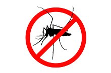 Prohibition sign for mosquito on