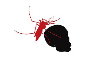 Red mosquito hold on human skull