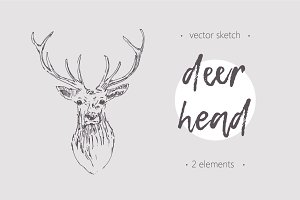 Two sketches of a deer head