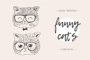 Two illustrations of a funny cat