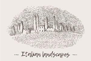 Italian landscapes, vineyards