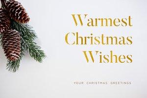 Christmas card #6