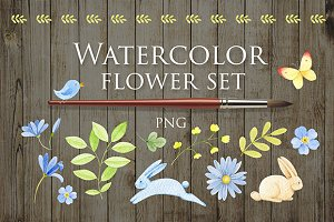 Watercolor flower set 1
