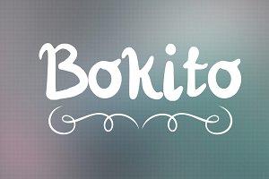 Bokito Handwritten Script Font