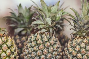 A lot of tropical pineapple fruit background. Tropical background. Fresh pineapples.