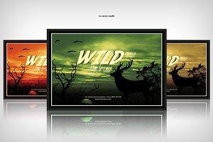 Wild - Flyer