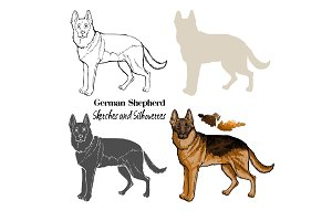 German Shepherd Dogs  Sketches