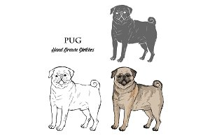 Hand Drawn Pug Dogs Sketches