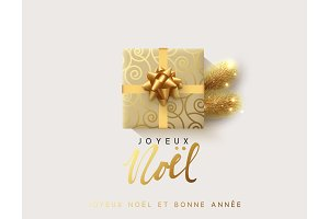 French text Joyeux Noel. Vector illustration letttering Merry Christmas, gift box closed wrapped ribbon with bow.