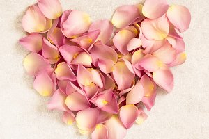 Pink petals roses in  heart shape.