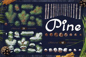 "❄ vector SET ""Pine tree"""