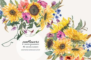 Hand Painted Watercolor Sunflower