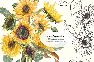 Watercolor Hand Painted Sunflower