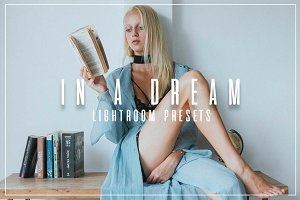 In A Dream // Lifestyle LR Presets