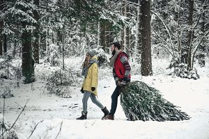 Couple picking Christmas tree