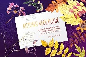 Autumn Herbarium Collection