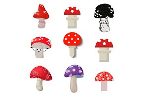 Vector amanita mushrooms dangerous set poisonous season toxic fungus food illustration.