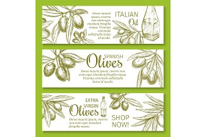 Olive oil sketch banner of green branch and fruit