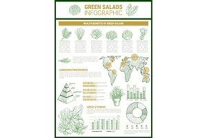 Salad greens and leaf vegetable infographic design