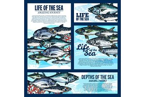 Sea life banner with fish and ocean animal sketch