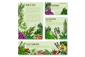 Herb and spice sketch banner of natural seasoning