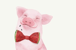 Illustration of pig