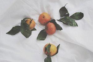 tangerines in bed