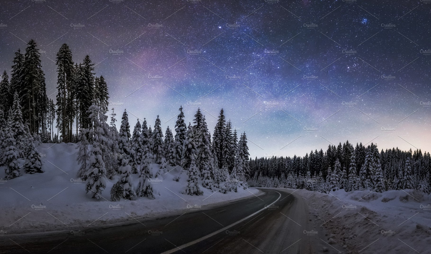 Winter Forest At Night Nature Photos Creative Market