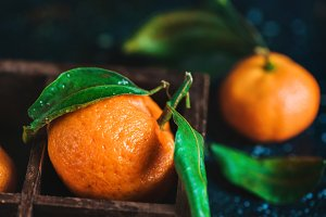 Close-up of tangerines in a wooden case on a dark background. Water drops on a surface. Dark food photography with vibrant orange fruit and copy space.