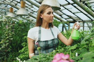 Attractive woman gardener in apron watering plants and flowers with garden sprayer in greenhouse